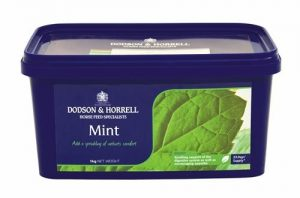 Dodson & Horrell Mint Horse Supplement