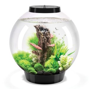biOrb Classic 30 Litre Aquarium with Light