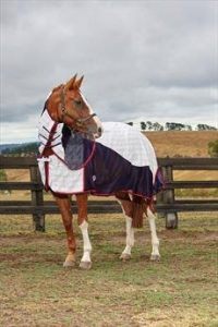 WeatherBeeta Breeze Combo Rug (6 Foot 3 Inch)