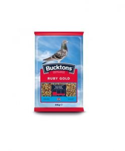 Bucktons Ruby Gold Pigeon Feed | Size: 20kg | Bird Food