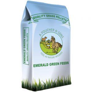 Emerald Green Feeds Grass Pellets | Size: 20kg | Horse Food